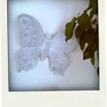 蝶のオブジェ